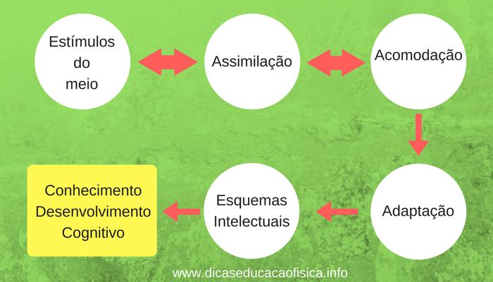Educação Física Construtivista: construção do conhecimento de Piaget